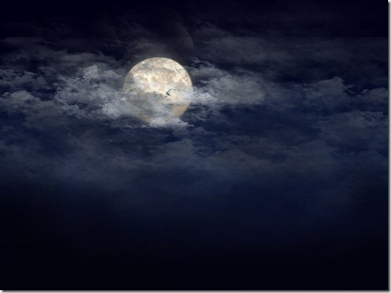 the moon by xaniii thumb 30 Beautiful Moon Inspirations